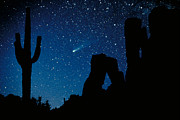 Comet Prints - Halleys Comet Print by Frank Zullo