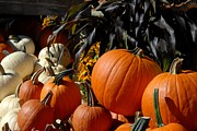 Autumn Photographs Prints - Halloween 88 Print by Joyce StJames