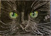 Kathy Marrs Chandler Art - Halloween Black Cat I by Kathy Marrs Chandler