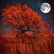 Painterly Photography Posters - Halloween Color Poster by Philippe Sainte-Laudy Photography