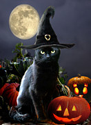 Full Moon Paintings - Halloween kitty by Gina Femrite