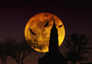 Bats Prints - Halloween Moon Print by Bill Cannon