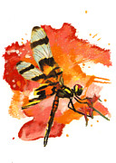 Insects Pastels - Halloween Pennant Dragonfly by Janice Lawrence