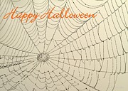 Halloween Card Prints - Halloween Spider Web Card Print by Sabrina L Ryan