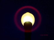 Night Lamp Prints - Halo of Light Print by Donna Blackhall
