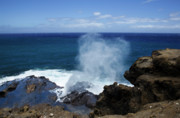 Halona Framed Prints - Halona Blowhole Framed Print by Charmian Vistaunet