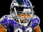 Nfl Prints - Haloti Ngata Print by Stephen Younts