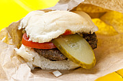 Burger Metal Prints - Hamburger with pickle and tomato Metal Print by Elena Elisseeva