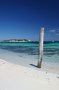 Wooden Post Framed Prints - Hamelin Bay Revisited Framed Print by Chris Ring Images