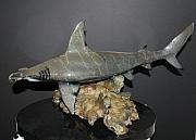 Still Life Sculptures - Hammerhead Shark In Bronze by Victor Douieb