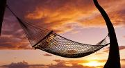 Attach Prints - Hammock at Sunset Print by Quincy Dein - Printscapes