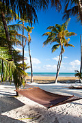 Florida Keys Framed Prints - Hammock in Paradise Framed Print by Adam Pender