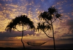 Fiji Prints - Hammock sunrise Print by Karl Manteuffel