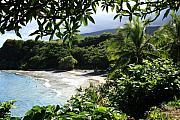 Hamoa Beach Maui Hawaii Print by Sharon Mau