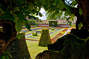 Hampton Court Prints - Hampton Court Gardens II Print by Jon Berghoff