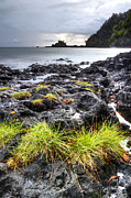 Tidal Pool Photos - Hana Tidal Pool Sunrise by Dustin K Ryan