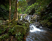 Hana Photos - Hana waterfall by James Roemmling