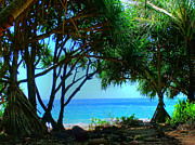 Tropical Prints Prints - Hanakapiai Beach 2 Print by Ken Smith