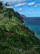 Island Photos Posters - Hanakapiai Beach Trail Poster by Ken Smith