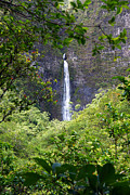 Hanakapiai Posters - Hanakapiai Falls Kauai Poster by Kevin Smith