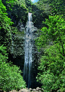 Tropical Prints Prints - Hanakapiai Falls Print by Ken Smith