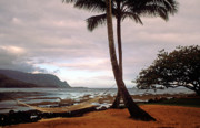 Kauai Prints Prints - Hanalei Bay Hammock at Dawn Print by Kathy Yates