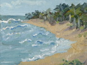 Kauai Artist Paintings - Hanalei Bay Kauai Hawaii by Zanobia Shalks