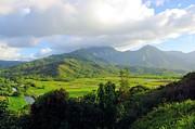 Hanalei Valley View Print by John  Greaves