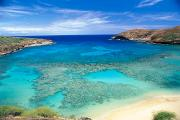 Turquoise Water Framed Prints - Hanauma Bay Framed Print by Peter French - Printscapes
