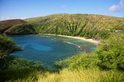 Ron Ron Framed Prints - Hanauma Bay Framed Print by Ron Dahlquist - Printscapes