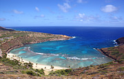 Snorkel Prints - Hanauma Bay Underwater Park Print by Kevin Smith