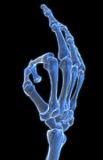 Sign Language Prints - Hand Gesture Print by MedicalRF.com