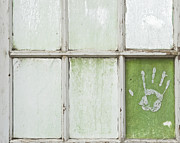 Windowpane Posters - Hand Print on a Greenhouse Windowpane Poster by Thom Gourley/Flatbread Images, LLC