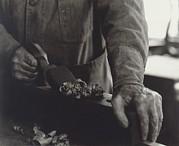 Hands Of Shaker Brother Ricardo Belden Print by Everett