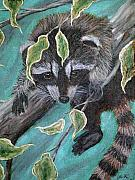 Raccoon Painting Framed Prints - Hanging around Framed Print by Nick Gustafson