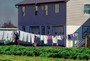 Amish Farm Posters - Hanging Laundry Poster by Thomas R Fletcher