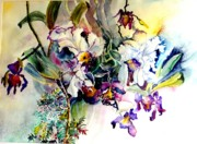 Orchids Drawings - Hanging Orchids by Mindy Newman