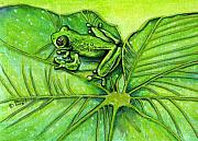 Frog Mixed Media Originals - Hanging Out by richard brooks. by Richard Brooks