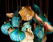 Arts And Crafts Framed Prints - Hanging Together - Sea Shell Wind Chime Framed Print by Steven Milner