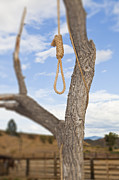 Lynching Framed Prints - Hangman Noose in a Tree Framed Print by Bryan Mullennix