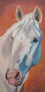 Equine Artist Prints - Hannocka Print by Anne West