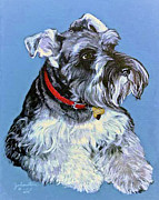 Pet Portraits Mixed Media Acrylic Prints - Hans The Schnauzer Portrait Acrylic Print by Nadine and Bob Johnston