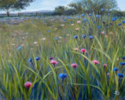 Field Of Flowers Paintings - Happiness Field by Susan Jenkins