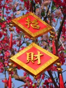 Holiday Decoration Framed Prints - Happy Chinese New Year Framed Print by Yali Shi
