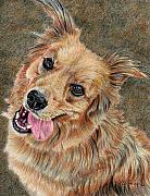 Joanne Stevens Art - Happy Dog by Joanne Stevens