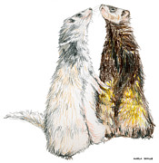 Ferret Framed Prints - Happy Ferrets Framed Print by Marla Saville