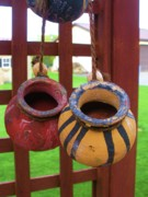 Happy Hanging Pots Print by Jeanette Oberholtzer