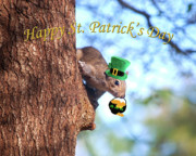 Patrick Framed Prints - Happy St. Pats Day Card Framed Print by Adele Moscaritolo