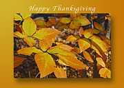 Fall Holiday Card Posters - Happy Thanksgiving Beech leaves Poster by Michael Peychich