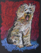 Furry Pastels Posters - Happy The English Sheepdog Poster by Michele Hollister - for Nancy Asbell